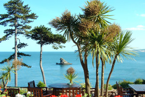 VIEW-Torquay-Meadfoot-to-Berry-Head